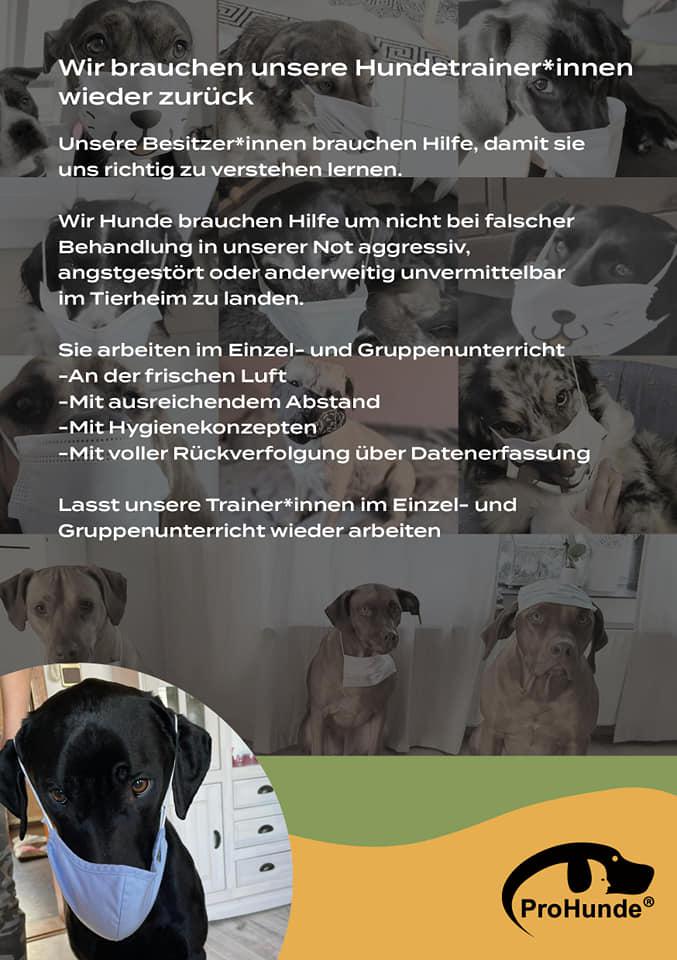 CoronaHundeschulenFlyer Hundeschule Fellnase